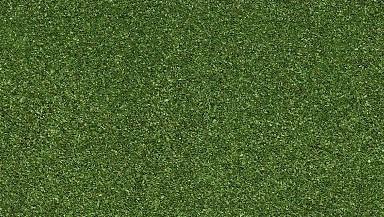 Laubblätter buchengrün (mittel)
