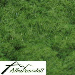 Grasfasern wiesengrün
