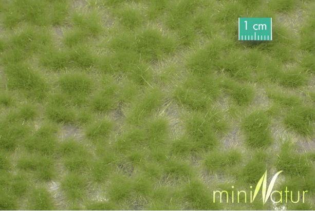 Mininatur Grasbüschel lang Frühling