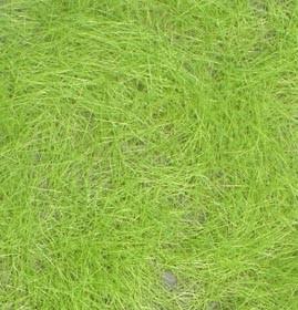 Grasfasern Mittelgrün (5mm)