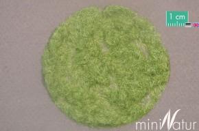 Mininatur Grasfasern Frühherbst (2mm, 50 gr)