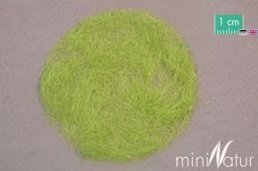 Mininatur Grasfasern Frühling (6.5mm, 50 gr)
