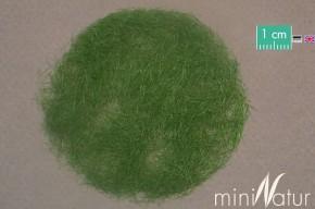 Mininatur Grasfasern Sommer (6.5mm, 50 gr)
