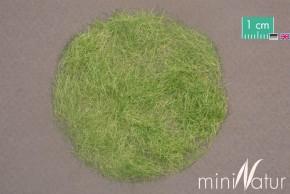 Mininatur Grasfasern Frühherbst (6.5mm, 50 gr)